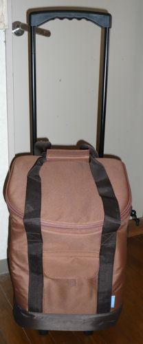 2009_3_26-shoppingbag.jpg